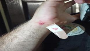 ثلاث اصابات في صيدا جراء الرصاص الطائش من المخيمات الفلسطينية إبتهاجا بإنهيار كنيس جفعات زئيف بالقدس المحتلة