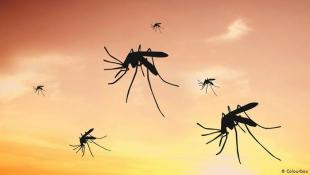 كيف يعمل رذاذ الوقاية من الحشرات وهل رشه على الجلد آمن؟