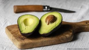 من بينها إنقاص الوزن.. 4 فوائد تجعلك تتناول الأفوكادو